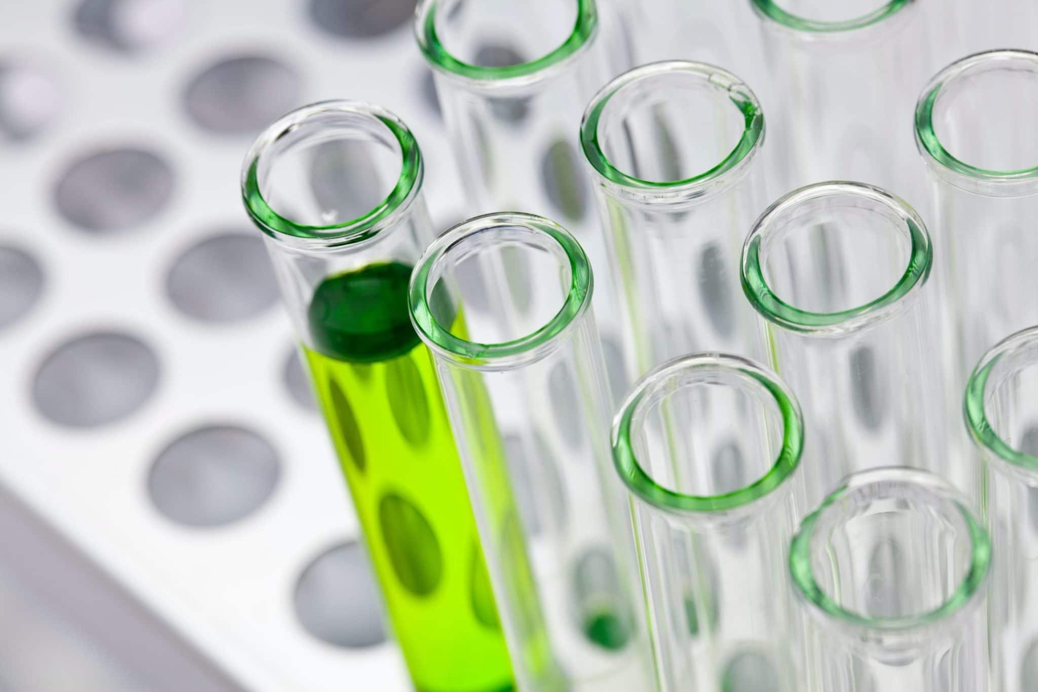 recrutet inégnieur biotechnologie