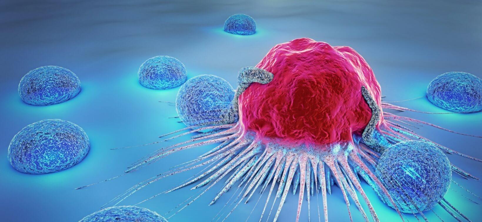 cellule car t cell therapie